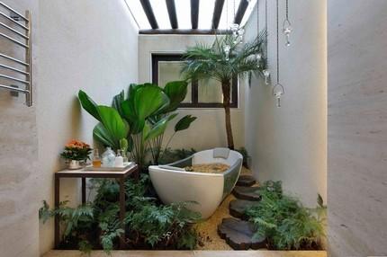 «Райский сад» в стенах дома